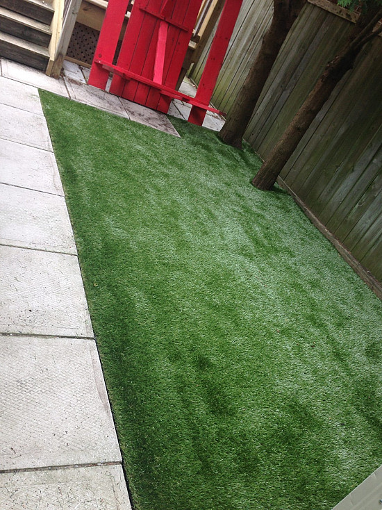 Pet Turf in Leaside