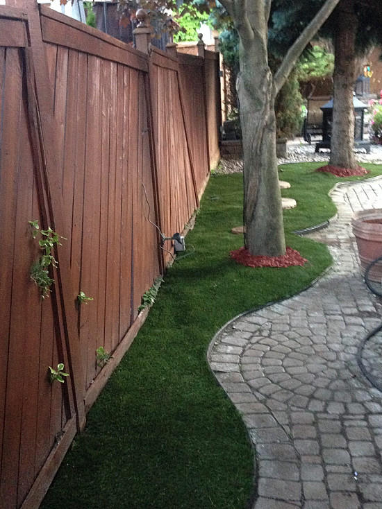 Artificial Pet Turf in Brampton
